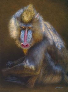 Windows to the Soul, Mandrill - Brian Jarvi Studios Africana African Continent