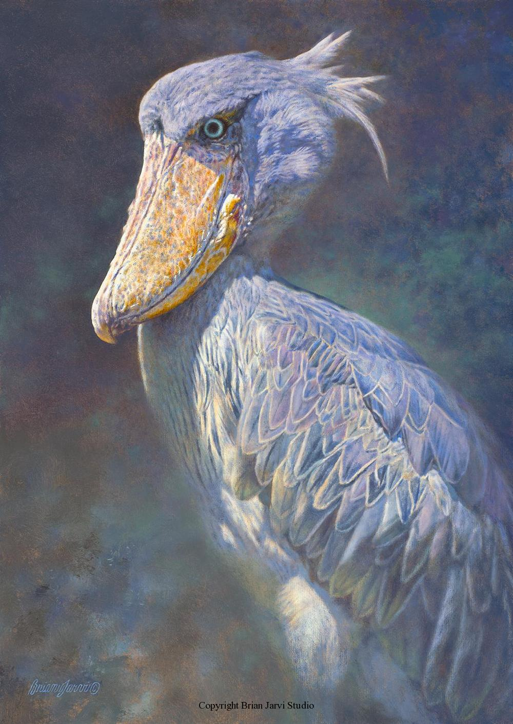 "Prehistoria-African Shoebill <br> Size: 17""x 24"" - Sold <B><font size=""2"" color=""red""><br>This Original has been sold and is in a private collection</font></B> - Brian Jarvi Studios Studies for African Menagerie Paintings Brian Jarvi Originals"