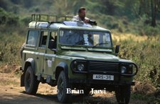 Brian Jarvi on Safari Collecting Reference - Brian Jarvi Studios Brian Jarvi Biography African Wildlife Artist Biography