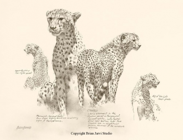 "Cheetah Study -  7"" x 13"" - Sold <B><font size=""2"" color=""red""><br>This Original has been sold and is in a private collection</font></B> - Brian Jarvi Studios Studies for African Menagerie Paintings Brian Jarvi Originals"
