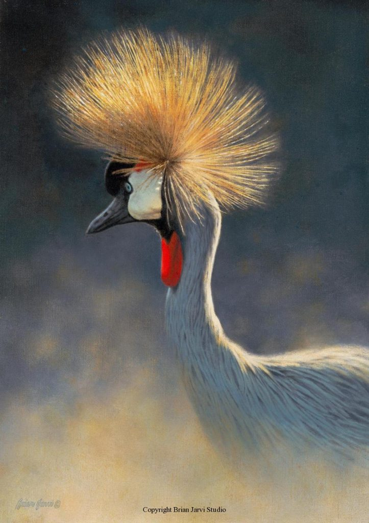 """Crowned Crane Study 12"""" x 17"""" <B><font size=""""2"""" color=""""red""""><br>This Original is available.<br>Please call Brian at (218) 326-1308 for pricing information.</font></B> - Brian Jarvi Studios Studies for African Menagerie Paintings Brian Jarvi Originals"""