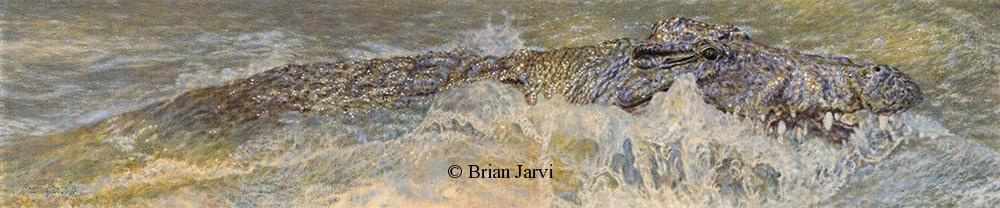 "Dragon - African Crocodile <br> Original Oil 8"" x 36"" <B><font size=""2"" color=""red""><br>This Original has been sold and is in a private collection</font></B> - Brian Jarvi Studios African Wildlife Original Art Brian Jarvi Artwork"