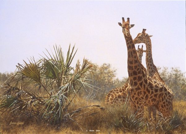 Giraffes and Lala Palms - Brian Jarvi Studios Brian Jarvi Artwork Limited Edition Prints