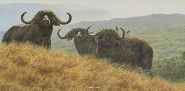 High Plains Drifters - Cape Buffalo - Brian Jarvi Studios Brian Jarvi Artwork Limited Edition Prints