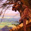 Highlander - African Leopard - Brian Jarvi Studios Brian Jarvi Artwork Limited Edition Prints