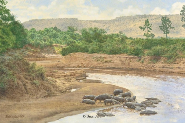 """Hippo Utopia <br>Original Oil 16"""" x 24"""" <B><font size=""""2"""" color=""""red""""><br>This Original has been sold and is in a private collection</font></B> - Brian Jarvi Studios African Wildlife Original Art Brian Jarvi Artwork"""