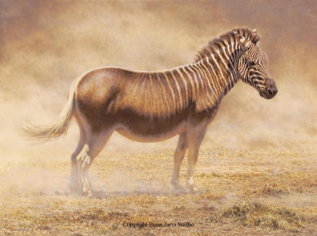 "Last Quagga - 36"" x 48"" <B><font size=""2"" color=""red""><br>This Original is available.<br>Please call Brian at 218-259-1333 for pricing information.</font></B> - Brian Jarvi Studios Studies for African Menagerie Paintings Brian Jarvi Originals"