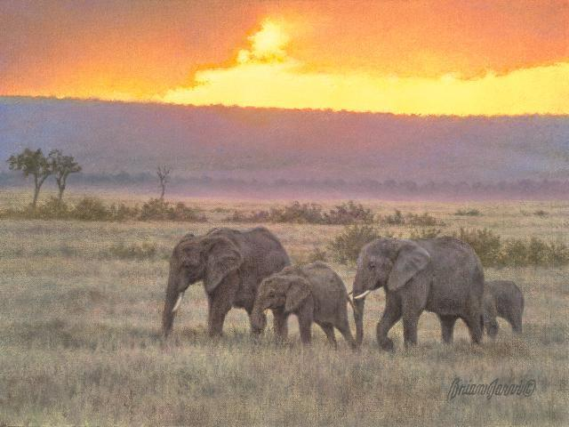"New Dawn - Elephants <br> 9"" x 12"" <B><font size=""2"" color=""red""><br>This Original has been sold and is in a private collection</font></B> - Brian Jarvi Studios African Wildlife Original Art Brian Jarvi Artwork"