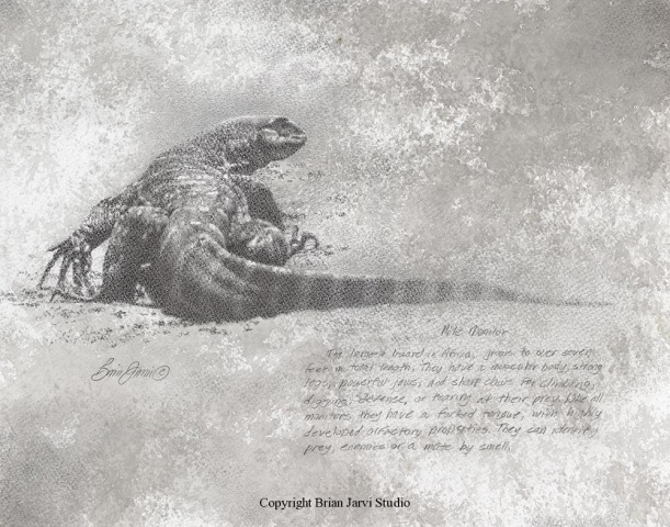 "Nile Monitor <br> 11""x14"" Original Pencil <B><font size=""2"" color=""red""><br>This Original is available.<br>Please call Brian at (218) 326-1308 for pricing information.</font></B> - Brian Jarvi Studios Studies for African Menagerie Paintings Brian Jarvi Originals"