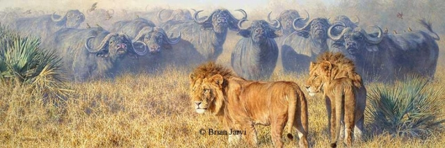 "Only Fools Rush In <br> Original Oil <B><font size=""2"" color=""red""><br>This Original has been sold and is in a private collection</font></B> - Brian Jarvi Studios African Wildlife Original Art Brian Jarvi Artwork"