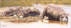 On the Flats - African Hippopotamus - Brian Jarvi Studios Brian Jarvi Artwork Limited Edition Prints