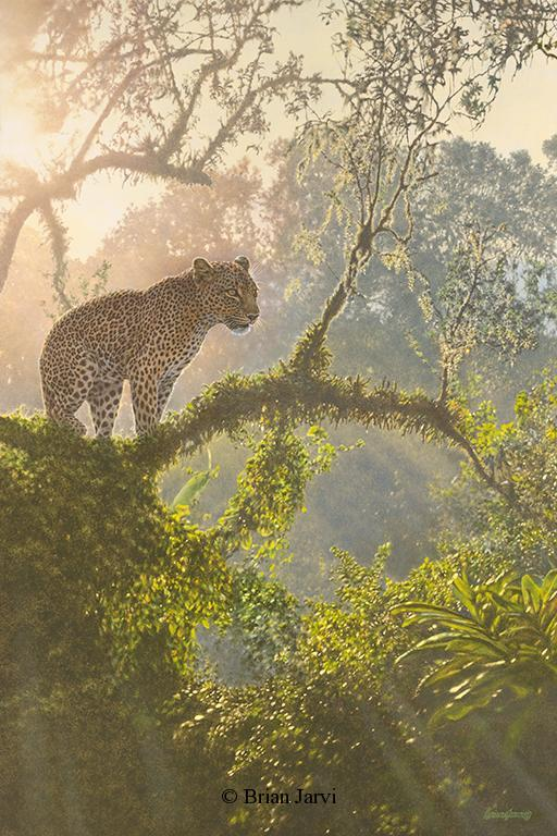 """Overlord - African Leopard <br>Original Oil 24"""" x 36"""" <B><font size=""""2"""" color=""""red""""><br>This Original has been sold and is in a private collection</font></B> - Brian Jarvi Studios African Wildlife Original Art Brian Jarvi Artwork"""