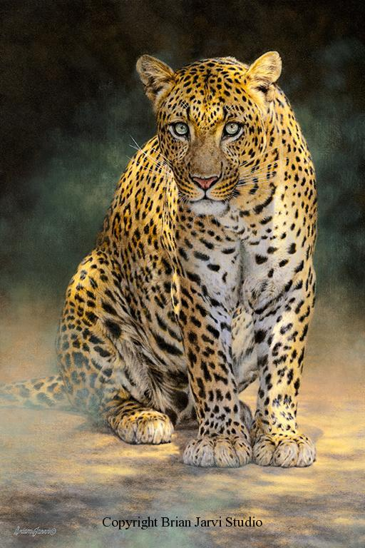 "Panthera Pardus <br>24""x36"" Original Oil - Sold <B><font size=""2"" color=""red""><br>This Original has been sold and is in a private collection</font></B> - Brian Jarvi Studios Studies for African Menagerie Paintings Brian Jarvi Originals"