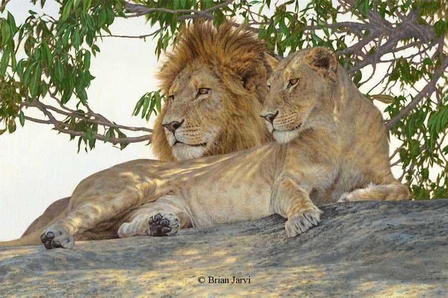 "Paradise Domain <br> Original Oil 20"" x 30"" <B><font size=""2"" color=""red""><br>This Original has been sold and is in a private collection</font></B> - Brian Jarvi Studios African Wildlife Original Art Brian Jarvi Artwork"