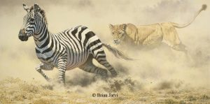 Razor`s Edge - Zebra and Lion - Brian Jarvi Studios Brian Jarvi Artwork Limited Edition Prints