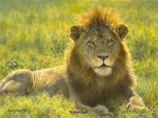 "Regal Pose <B><font size=""2"" color=""red""><br>This Original has been sold and is in a private collection</font></B> - Brian Jarvi Studios African Wildlife Original Art Brian Jarvi Artwork"