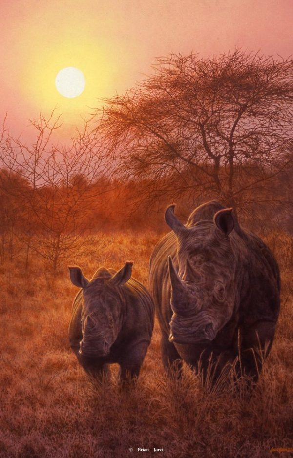 "Rising Son - Big Five Rhinoceros - Brian Jarvi Studios Brian Jarvi Art African Wildlife ""Big Five"""