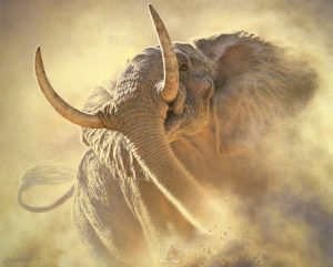 Rogue - Bull African Elephant - Brian Jarvi Studios Brian Jarvi Artwork Limited Edition Prints