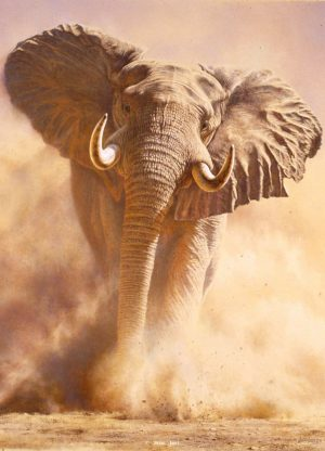 "Rush - Big Five Elephant - Brian Jarvi Studios Brian Jarvi Art African Wildlife ""Big Five"""