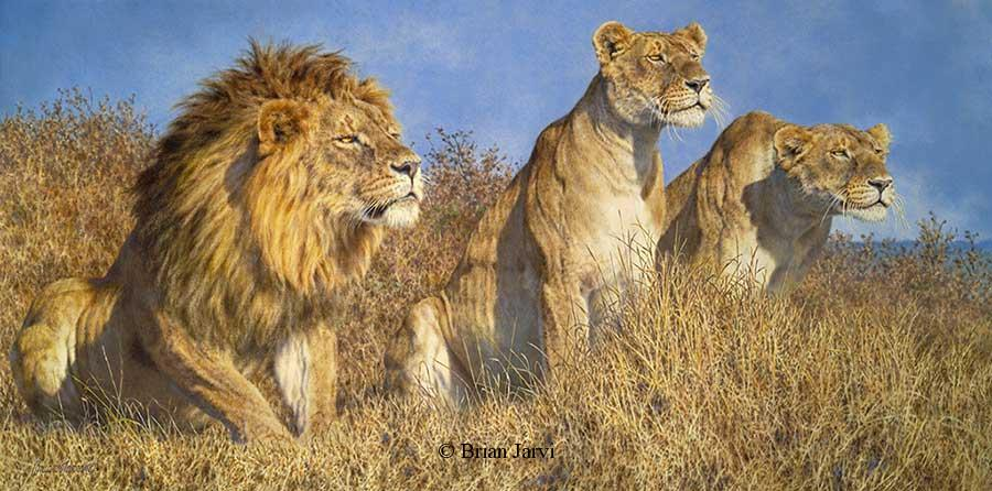 "The Buffalo Soldiers <br> Original Oil 30"" x 60"" <B><font size=""2"" color=""red""><br>This Original has been sold and is in a private collection</font></B> - Brian Jarvi Studios African Wildlife Original Art Brian Jarvi Artwork"