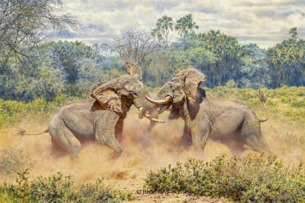 The Last Gladiators - African Bull ElephantsSCI 2009 Conservation Artist of The Year Print - Brian Jarvi Studios Brian Jarvi Artwork Limited Edition Prints