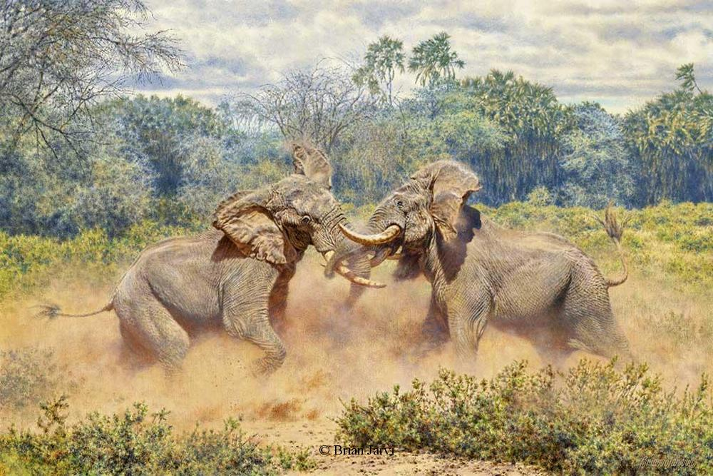 """The Last Gladiators"" – African Bull Elephants"
