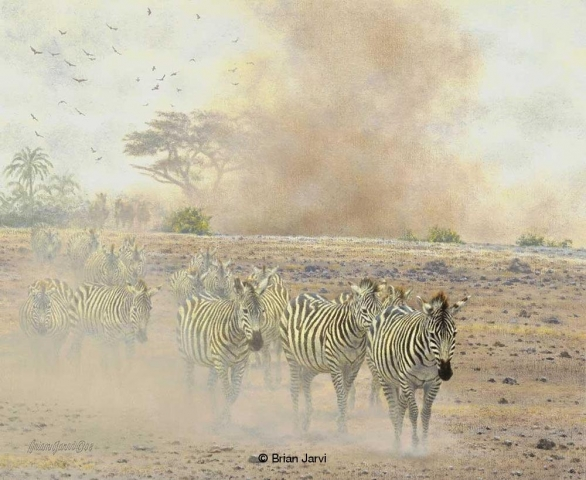 "The Mean Season - Migrating Zebras<br>Original Oil 17"" x 14"" <B><font size=""2"" color=""red""><br>This Original has been sold and is in a private collection</font></B> - Brian Jarvi Studios African Wildlife Original Art Brian Jarvi Artwork"