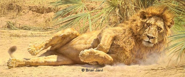 "The Rising<br>Original Painting 25"" x 60"" <B><font size=""2"" color=""red""><br>This Original has been sold and is in a private collection</font></B> - Brian Jarvi Studios African Wildlife Original Art Brian Jarvi Artwork"