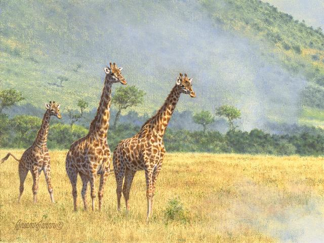 "Where There`s Smoke, There`s Fire - Giraffes <br> 9"" x 12"" <B><font size=""2"" color=""red""><br>This Original has been sold and is in a private collection</font></B> - Brian Jarvi Studios African Wildlife Original Art Brian Jarvi Artwork"